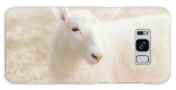 Little Lamb Galaxy Case