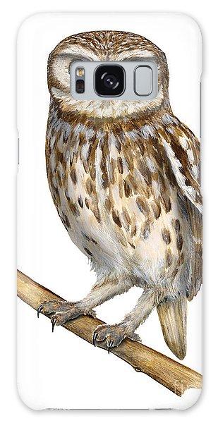 Little Owl Or Minerva's Owl Athene Noctua - Goddess Of Wisdom- Chouette Cheveche- Nationalpark Eifel Galaxy Case