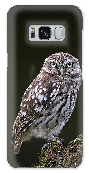 Little Owl Galaxy Case