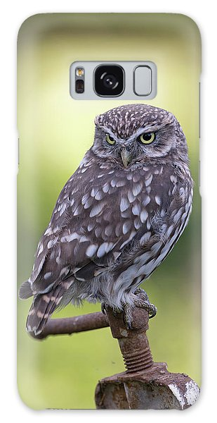 Little Owl Pipe Bender Galaxy Case