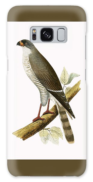 Little Red Billed Hawk Galaxy Case
