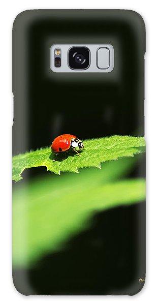 Little Red Ladybug On Green Leaf Galaxy Case