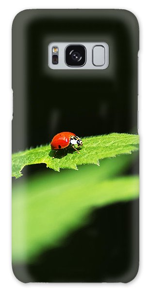 Little Red Ladybug On Green Leaf Galaxy Case