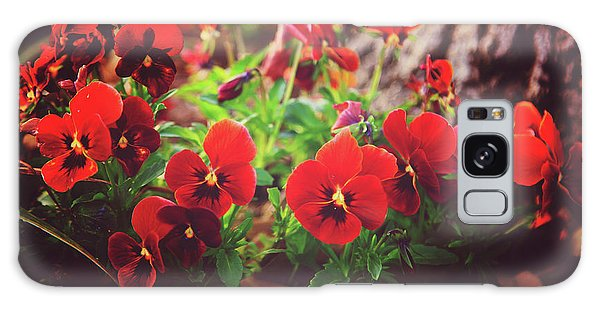 Little Red Pansies Galaxy Case by Toni Hopper