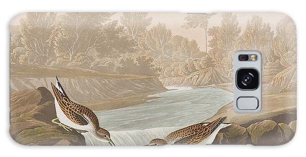 Waterfall Galaxy Case - Little Sandpiper by John James Audubon