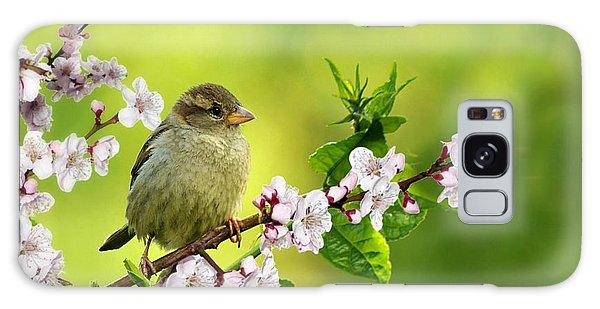 Little Sparrow Galaxy Case
