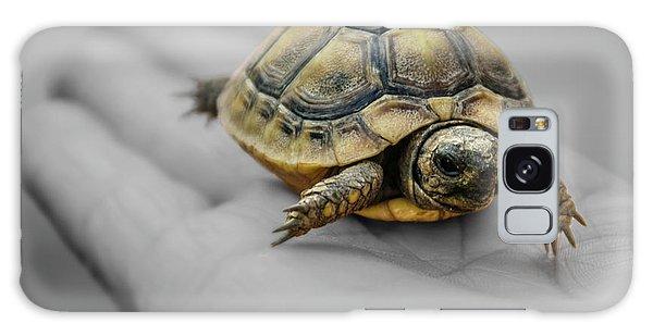 Little Turtle Baby Galaxy Case
