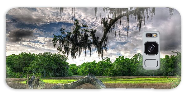 Live Oak Marsh View Galaxy Case