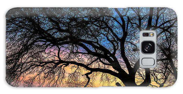 Live Oak Under A Rainbow Sky Galaxy Case
