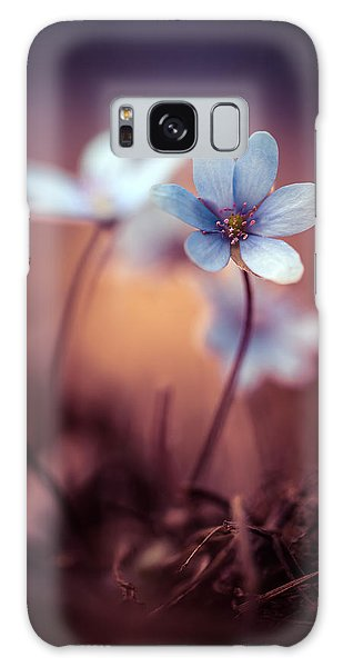 Liverworts Galaxy Case