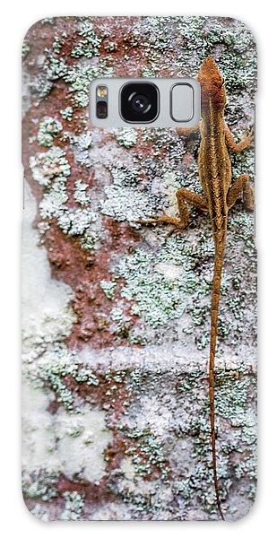 Lizard And Lichen On Brick Galaxy Case