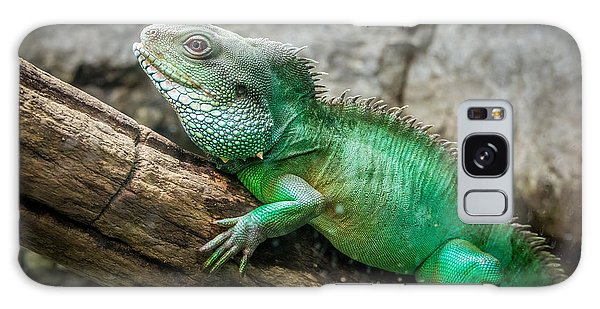 Lizard On Branch Galaxy Case