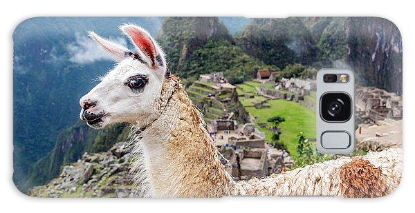 Llama Galaxy S8 Case - Llama At Machu Picchu by Jess Kraft