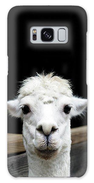 Llama Galaxy S8 Case - Llama by Lauren Mancke
