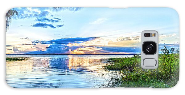 Galaxy Case featuring the photograph Lochloosa Lake by Anthony Baatz