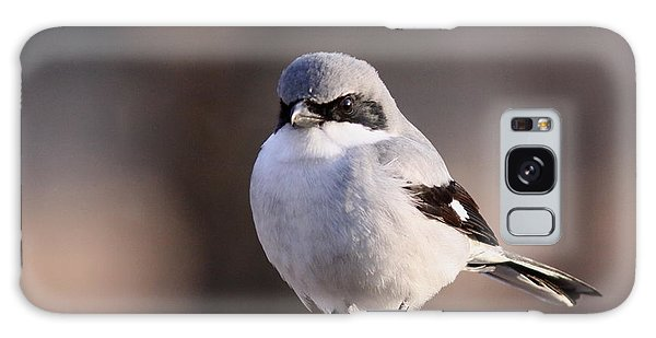 Loggerhead Shrike - Smokey Galaxy Case