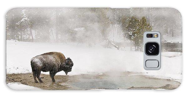 Bison Keeping Warm Galaxy Case