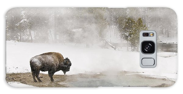 Bison Keeping Warm Galaxy Case