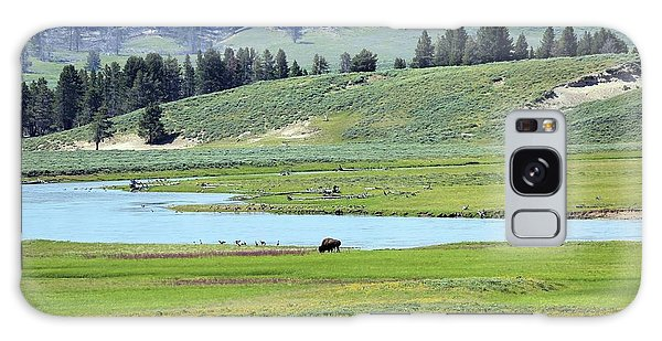 Lone Bison Out On The Prairie Galaxy Case