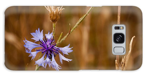 Lone Cornflower Galaxy Case