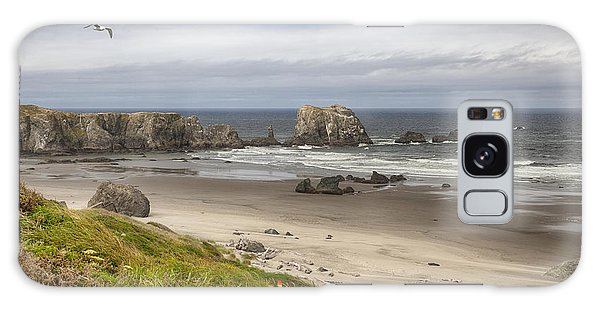 Lone Gull - Bandon Beach Galaxy Case