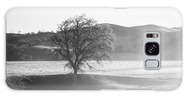 Lone Oak, Clearing Fog, San Andreas Rift Valley Galaxy Case