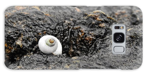 Lone Seashell Galaxy Case
