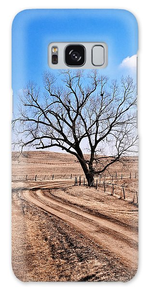 Lone Tree February 2010 Galaxy Case