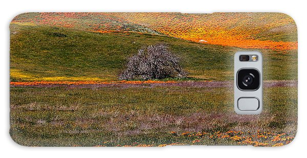 Lone Tree In A Sea Of Orange And Yellow Galaxy Case