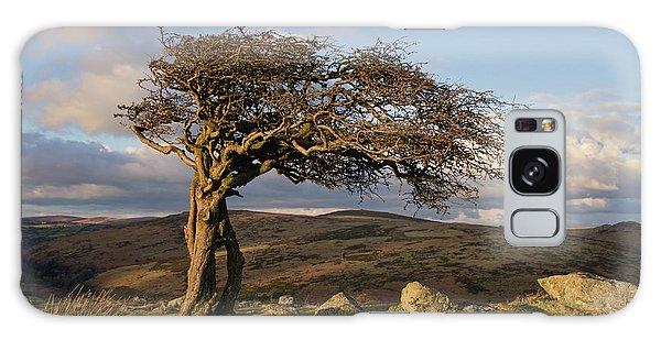 Lone Tree On Dartmoor Galaxy Case