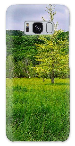 Lone Tree Sieur De Mont Woodland Acadia Galaxy Case