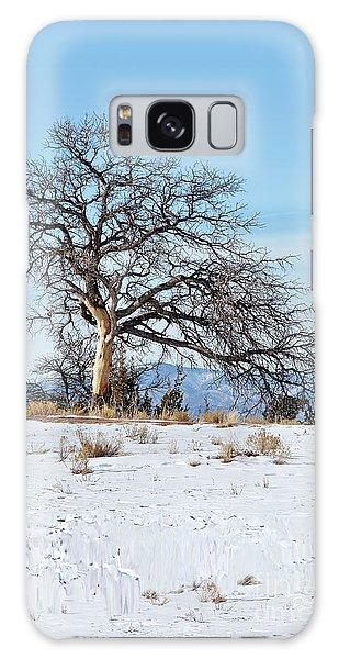 Lone Tree Winter Scene Galaxy Case