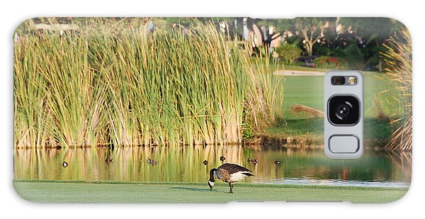 Lonely Goose On The Golf Course Galaxy Case by Jan Daniels
