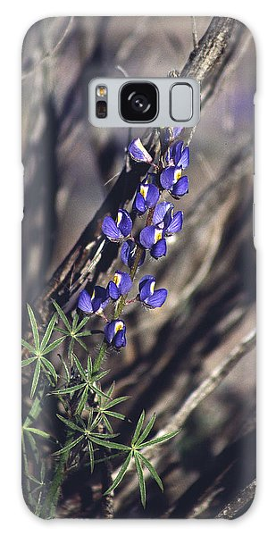 Lonely Lupine Galaxy Case