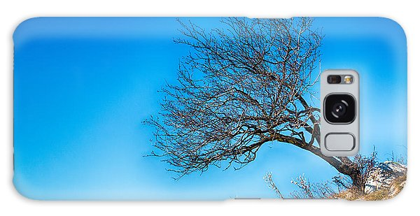 Lonely Tree Blue Sky Galaxy Case