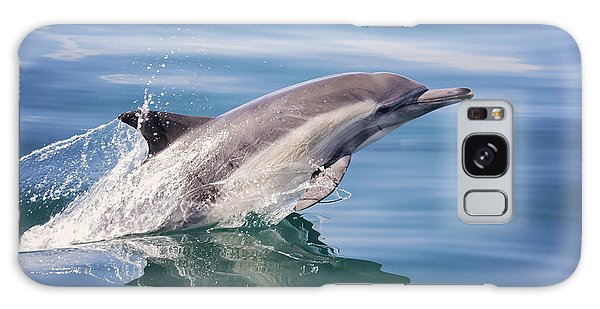 Long Beaked Common Dolphin Galaxy Case