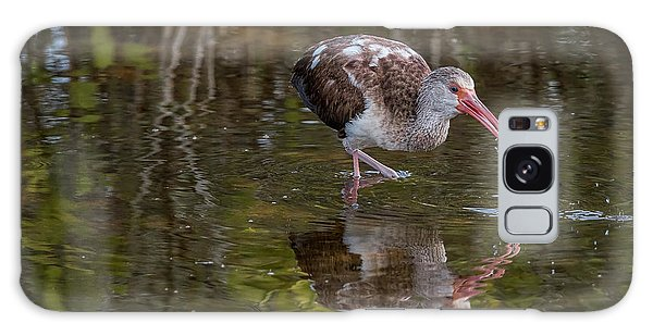 Long-billed Curlew - Male Galaxy Case