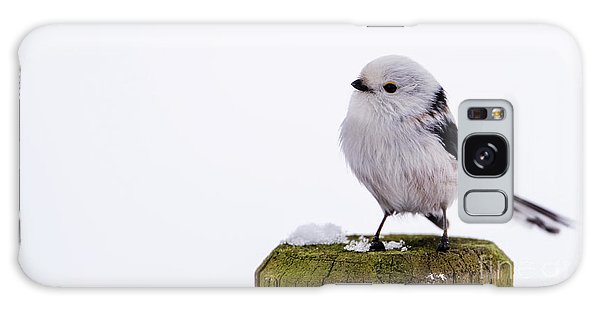 Long-tailed Tit On The Pole Galaxy Case by Torbjorn Swenelius