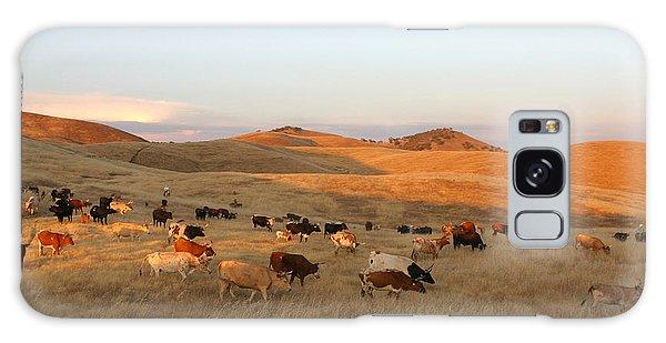 Longhorns Galaxy Case