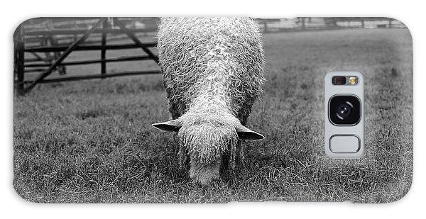 Longwool Sheep Grazing Galaxy Case