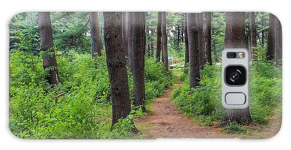 Look Park Nature Path Galaxy Case