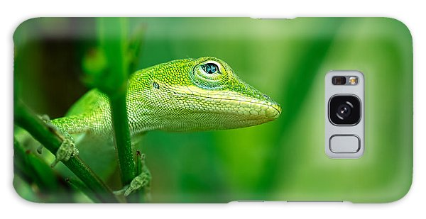 Look Up Lizard Galaxy Case