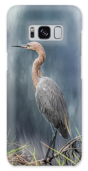 Egret Galaxy Case - Looking For Food by Kim Hojnacki