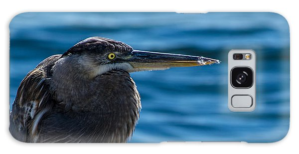 Looking For Lunch Galaxy Case by Marvin Spates