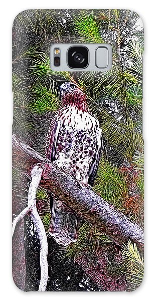 Looking For Prey - Red Tailed Hawk Galaxy Case by Glenn McCarthy Art and Photography
