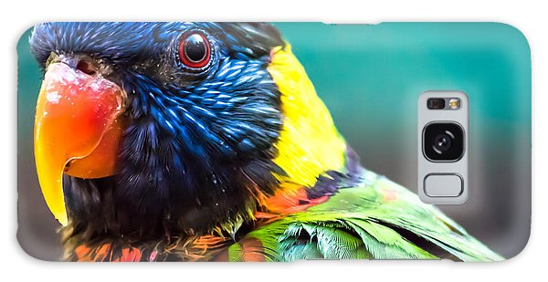 Lorikeet Glance Galaxy Case