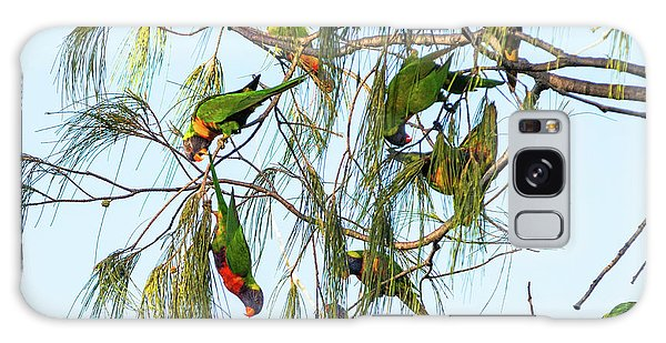 Lorikeets Swarming From Tree To Tree Galaxy Case