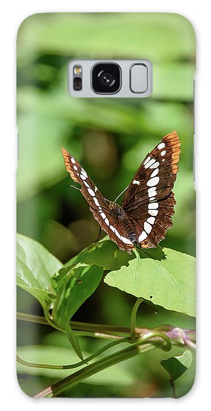 Lorquin's Admiral Butterfly Galaxy Case