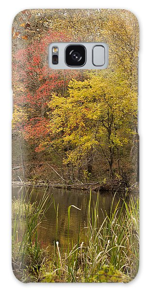 Lost Creek Autumn Galaxy Case