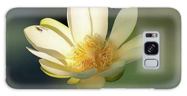 Lotus Beauty Galaxy Case by Carolyn Dalessandro